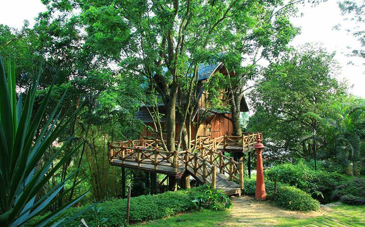 Tree house at Green Gates Hotel
